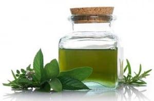 cách chữa bệnh lậu tại nhà bằng tinh dầu trà