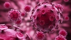 Hình ảnh virut gây mụn rộp