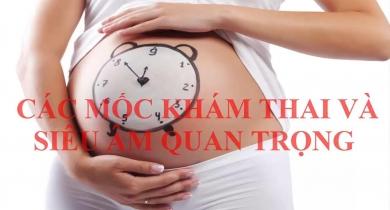 các mốc khám thai quan trọng